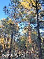 2941 Antelope Trail