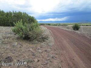 Lot 011D Big Six Ranches, Vernon, AZ 85940