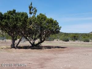 TBD SPANISH TRAIL, Eagar, AZ 85925