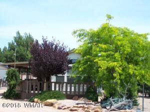 2212 Rodeo Road, Overgaard, AZ 85933