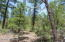 2132 Fir Drive, Parcel 2, Lakeside, AZ 85929