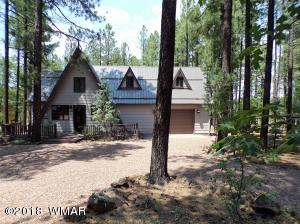 Beautiful Home nestled in the pines