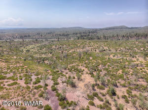 TBD 10 Acres, Linden, AZ 85901
