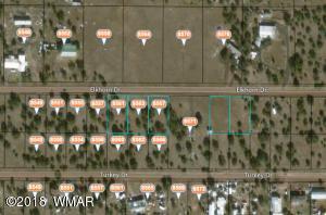 8575 Elkhorn Drive, Show Low, AZ 85901