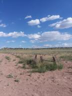 Lot 239 Carrizo Ranches, N6188, St. Johns, AZ 85936