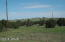 TBD CR 5101, Concho, AZ 85924