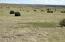 Lot 99 Taylor Farms #2, Taylor, AZ 85939