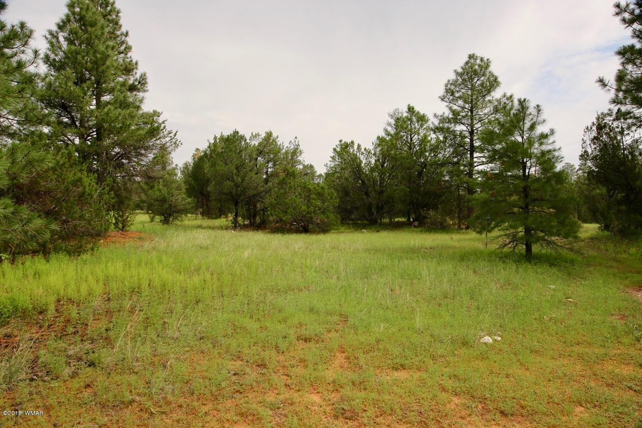 Awesome, tree-studded, horse property on quiet street. Power, water, and septic installed, ready for you to build your year-around home or retreat from the summer heat. Lot is located in a homes only area, without an HOA, or short distance off paved road. It is a short distance to surrounding National Forest land that provide endless outdoor recreational activities.