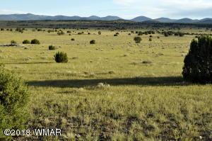 207 Lake View Ranch, Concho Valley, AZ 85924