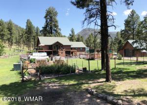 42334 HWY. 180, Alpine, AZ 85920