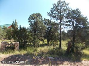 2927 Antelope Trail