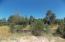 2927 Antelope Trail, Overgaard, AZ 85933