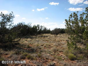 6017 Wide Sky Road, Lot 629 CCR#4, Overgaard, AZ 85933