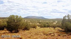 Lot 394 Woodridge Ranch, N8547, Concho, AZ 85924