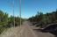 TBD 107-12-838, Vernon, AZ 85940