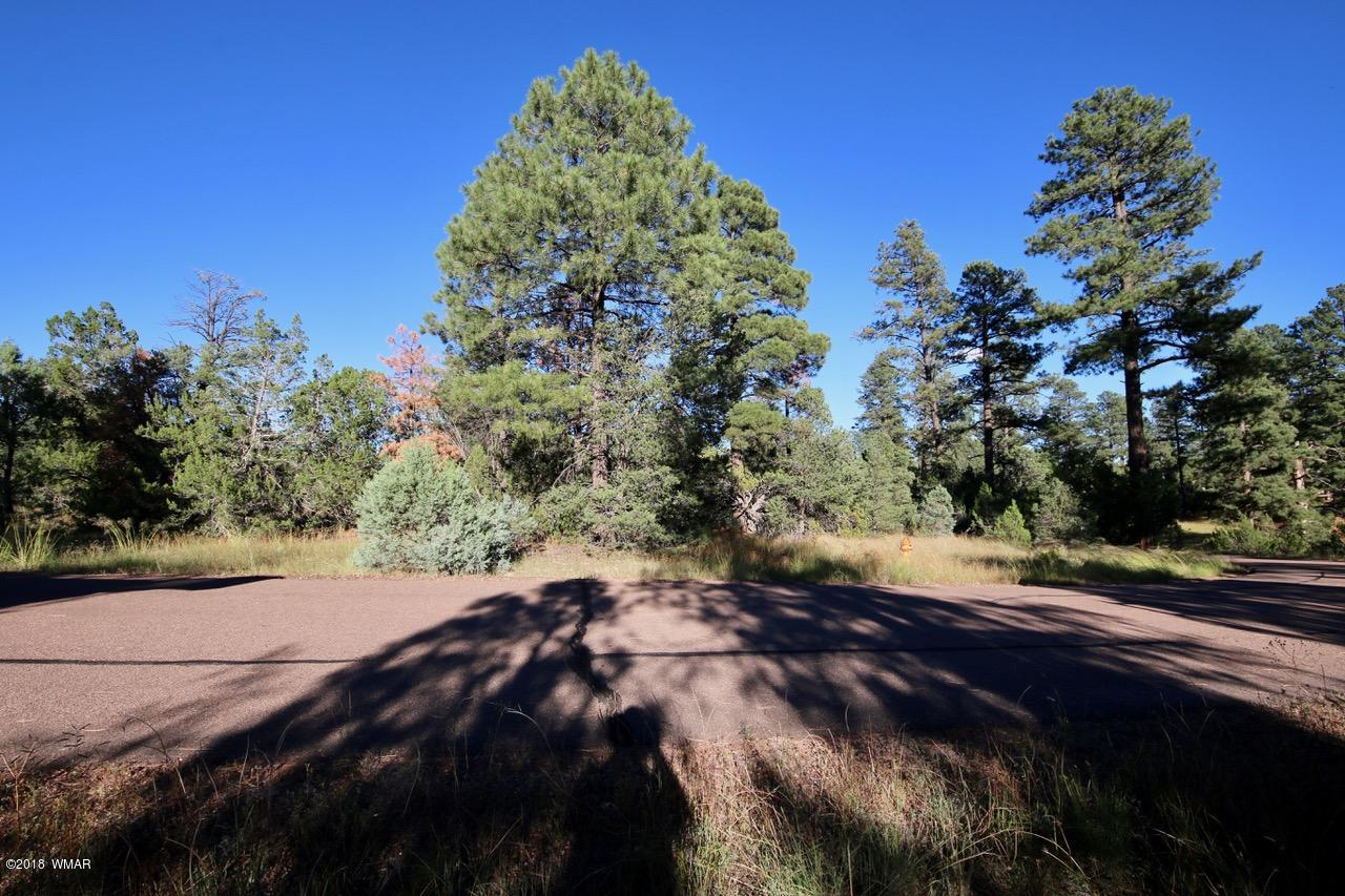 This is a rare land opportunity in Heber/Overgaard, 3.77 acres on Hwy 277, heavily treed, that could be used for commercial or residential. Water and power are at the lot line, and there is access from both 277 and Ponderosa Road. This property is priced to sell; don't miss out on this one!