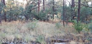 2964 Teddy Bear Trail