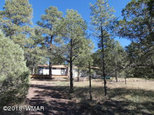 2131 Parkinson Road, Lakeside, AZ 85929