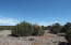 TBD 201-38-243,201-38-244,201-38-2, Concho Valley, AZ 85924
