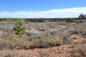 4459 Silver Hawk Trail, Snowflake, AZ 85937