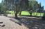 1950 Passage Drive, LK GV #46, Show Low, AZ 85901