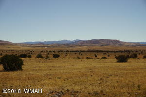 Lot 1 Cedar Gulch Ranch, Concho, AZ 85924