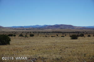 Lot 2 Cedar Gulch Ranch, Concho, AZ 85924