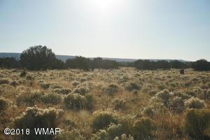 Lot 890 Woodland Valley Ranch, St. Johns, AZ 85936