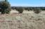 TBD off Old Hunt, Concho, AZ 85924