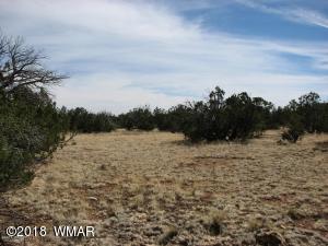 Lot 362 Chevelon Canyon Ranch #3, Overgaard, AZ 85933