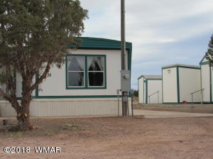 9735 E Concho Highway, Snowflake, AZ 85937