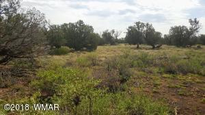 4339 Colt Road, Snowflake, AZ 85937