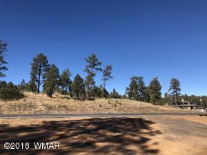 Tract D S White Mountain Road, Show Low, AZ 85901