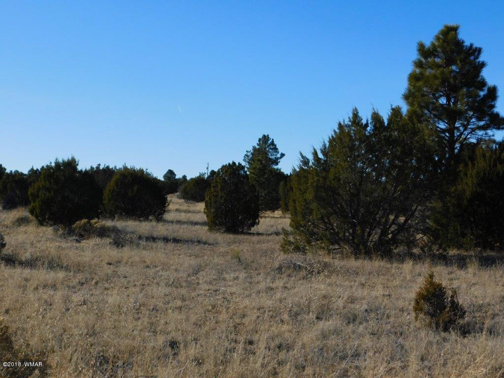 ''PRICED TO SELL'' This 2.41 acre property has septic and power already on the property and is located on a quiet road with plenty of privacy for you to build your mountain dream home. Come take a look today and make it yours!