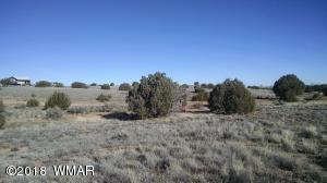 4498 Appaloosa Road, Snowflake, AZ 85937