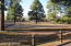 2708 High Pine Loop, Overgaard, AZ 85933