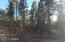 4857 Rim Spur, Lakeside, AZ 85929