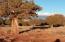 Lot 589 Ranch of the White Mountains, CR 5020/ N8562, Concho, AZ 85924