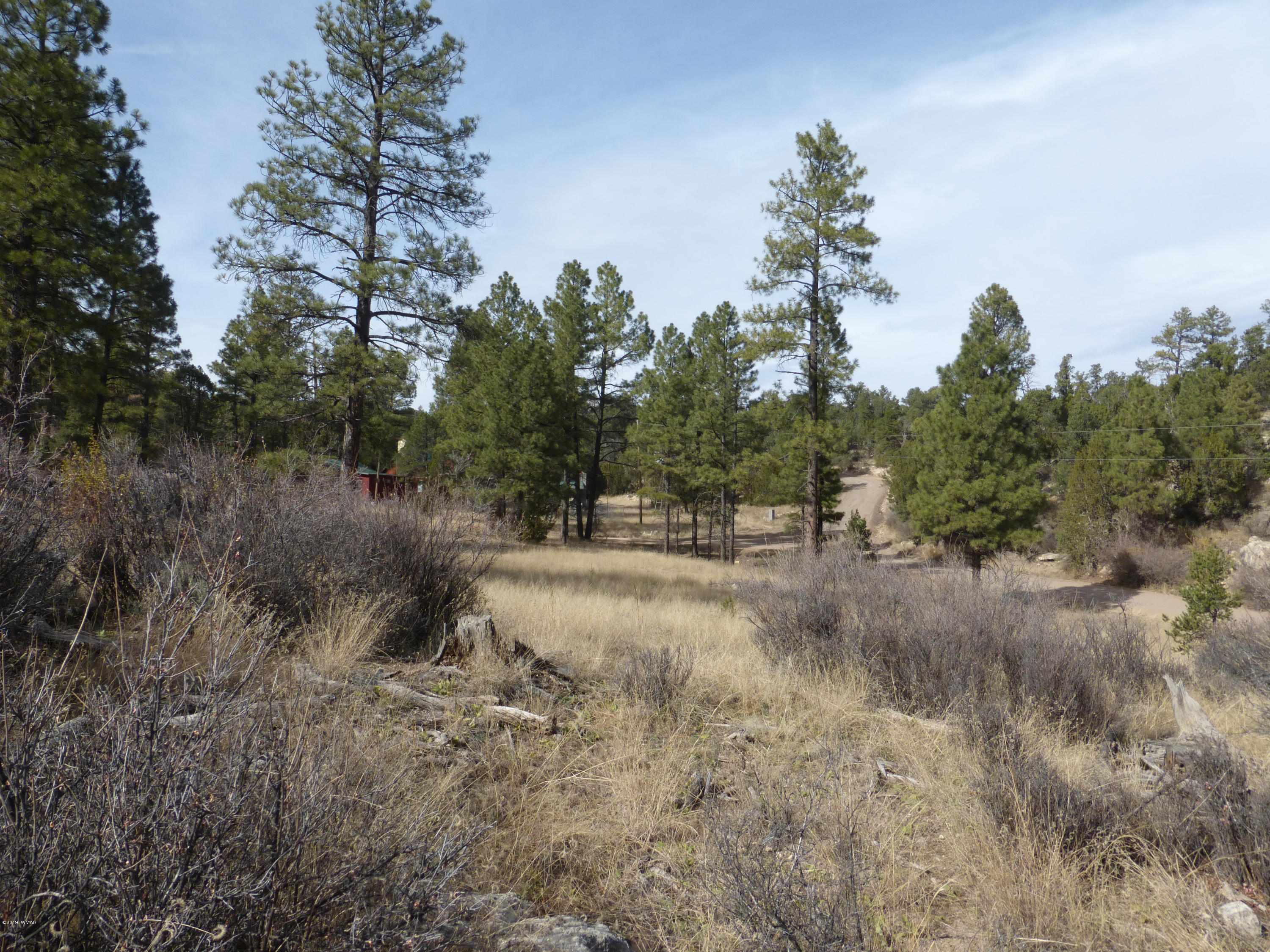 Super location! This 3.00 acre homesite has lots of potential with tall pines & level areas for your custom cabin or manufactured home plus hillside too. Power & water are available & a septic system is needed. Close to schools & market & easy access from paved roads. Just a short distance to national forest with public access for miles of riding, hiking or quads.