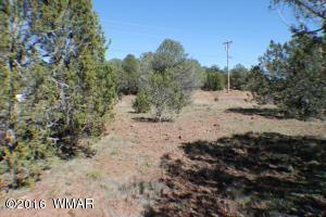 Lot 81 CR 3113, Vernon, AZ 85940