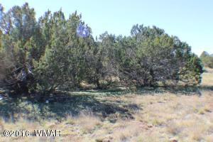 Lot 82 CR 3113, Vernon, AZ 85940