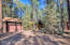 3117 Lake View Drive, Pinetop, AZ 85935