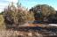 Park Show Low Unit 5 Lot #1876, Concho, AZ 85924