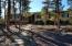 1510 S Elk Run Drive, Show Low, AZ 85901