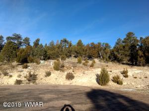 3363 Spring Court, Overgaard, AZ 85933