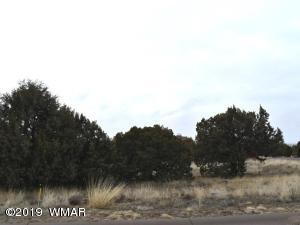 500 S Ridge Drive, Show Low, AZ 85901
