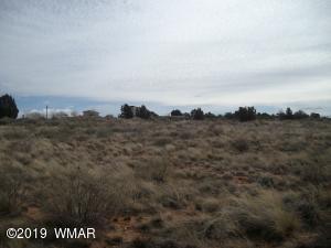 2729 W Huckleberry Ln, Taylor, AZ 85939