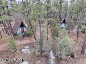 45 E Woodland Lake Road, Pinetop, AZ 85935