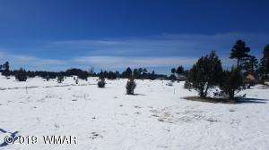 2734 Bain Trail, Overgaard, AZ 85933