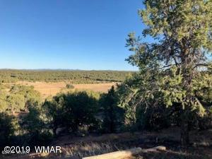 1653 Williams Lane, 1635 Williams Lane, Show Low, AZ 85901